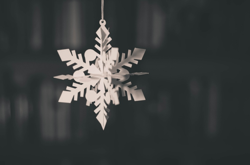 photo of paper snowflake hanging in front of a bookcase