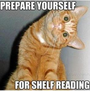 prepare for shelf reading